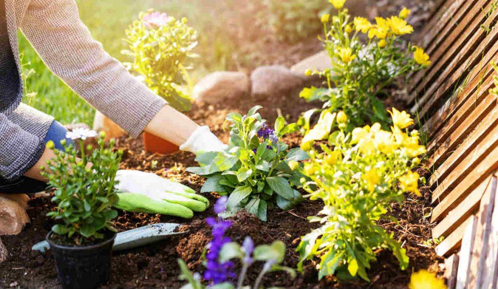 κηπουρική οφέλη για την υγεία μας
